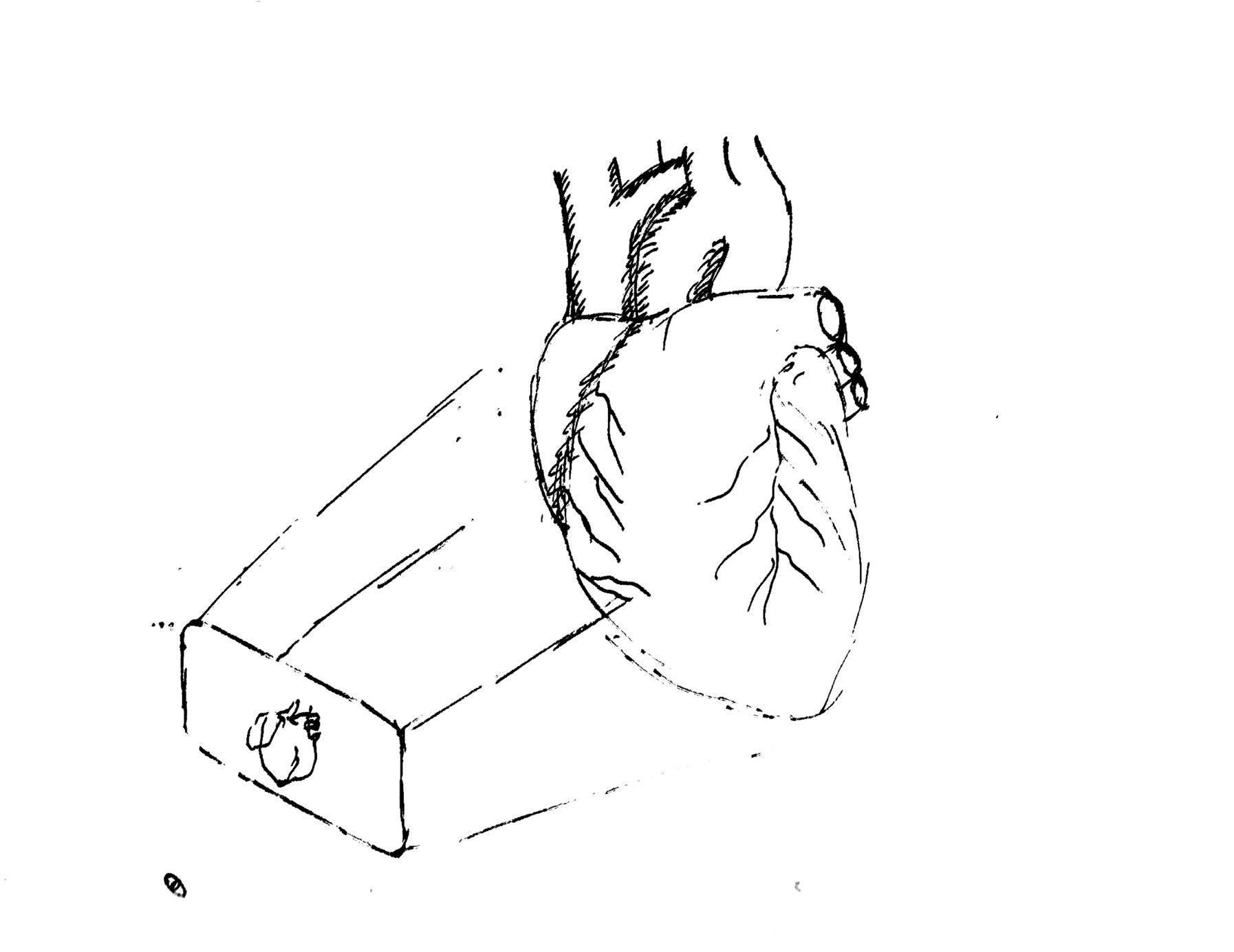 Persona Sketch VI